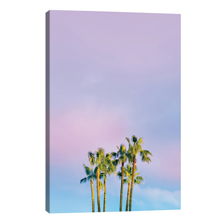 "Summer Dreams With Palms // Beli (12""W x 18""H x 0.75""D)"