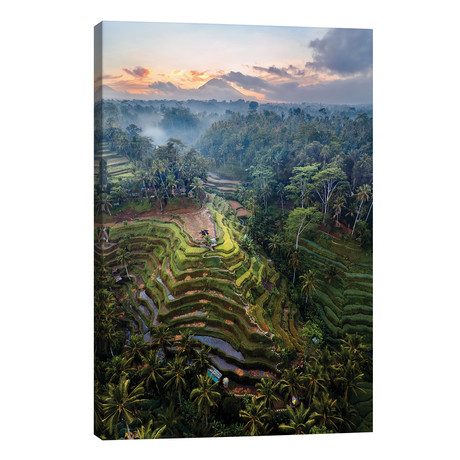 "Rice Terraces Of Bali IV // Matteo Colombo (12""W x 18""H x 0.75""D)"