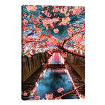 "Cherry Blossom At Meguro Canal III // Philippe Hugonnard (12""W x 18""H x 0.75""D)"