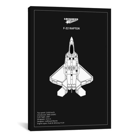 "BP Lockheed F22 Raptor Black // Mark Rogan (12""W x 18""H x 0.75""D)"