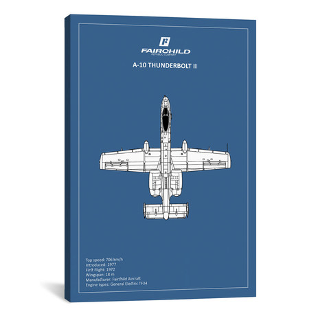 """BP A-10 Thunderbolt 2 // Mark Rogan (12""""W x 18""""H x 0.75""""D)"""