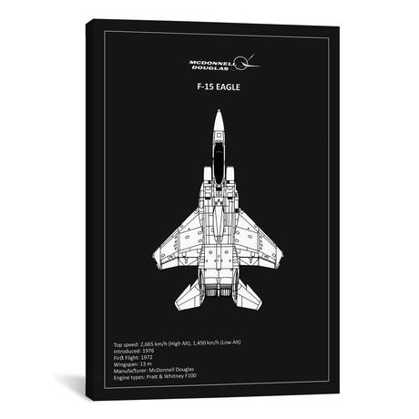"BP F15 Eagle Black // Mark Rogan (12""W x 18""H x 0.75""D)"