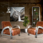 Aviator Stainless Steel Leisure Chair