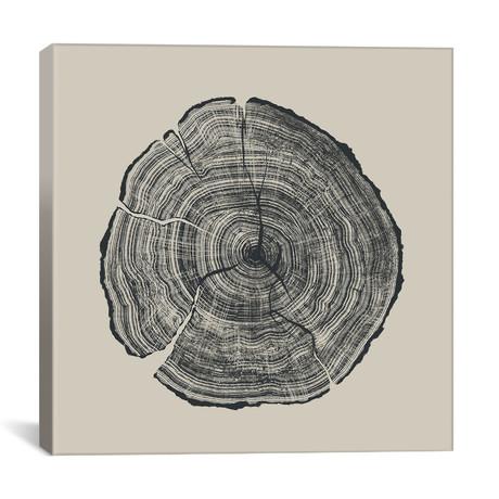 """Hand-Drawn Oak (12""""W x 12""""H x 0.75""""D)"""