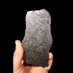Muonionalusta Meteorite End Cut // Ver. III