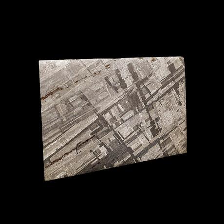 Muonionalusta Meteorite Slice // Ver. 3