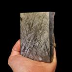 Muonionalusta Meteorite End Cut