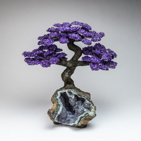 The Protection Tree // Genuine Amethyst Tree + Amethyst Matrix // Extra Large