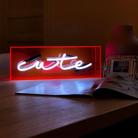 Cute Acrylic Box Neon Light