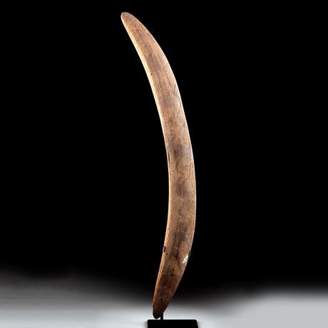 19th C. Australian Aboriginal Wood Throwing Stick