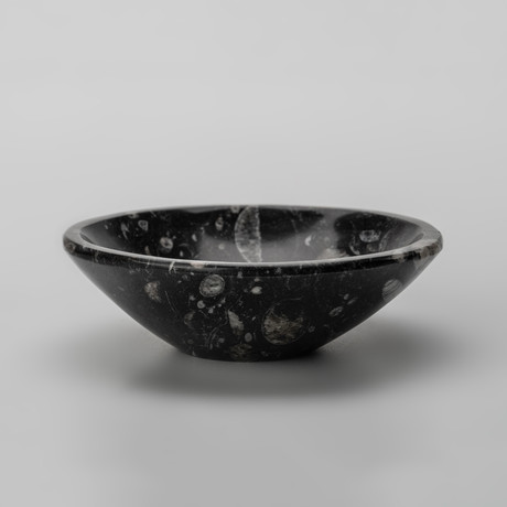 Round Ammonite and Goniatite Fossil Bowl // Small