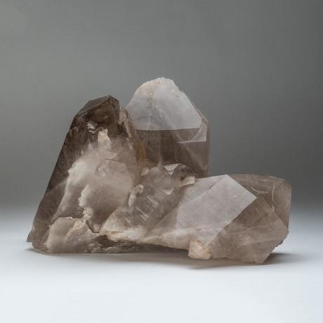 Smoky Quartz Crystal Cluster // Large