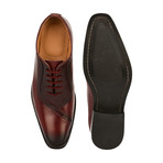 Debonair Oxford // Burgundy (US: 9)
