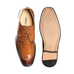 Alban Dress Shoes // Brown (US: 10)