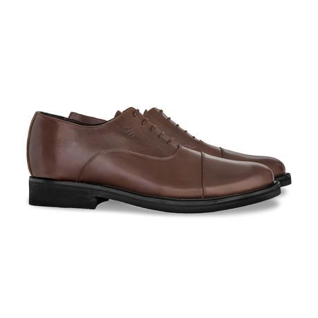 Terni Dress Shoes // Brown (US: 7)