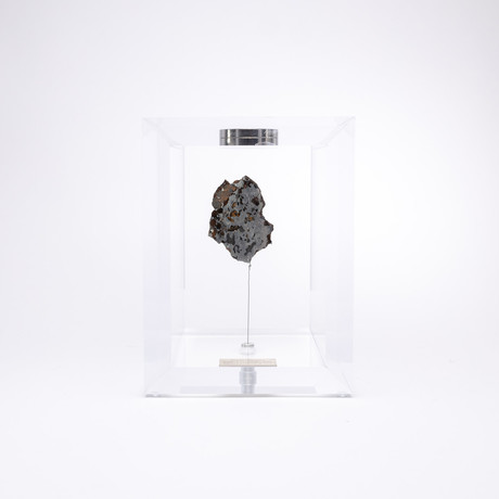 Space Box // Seymchan Meteorite from Magadanskaya Oblast, Russia // Small