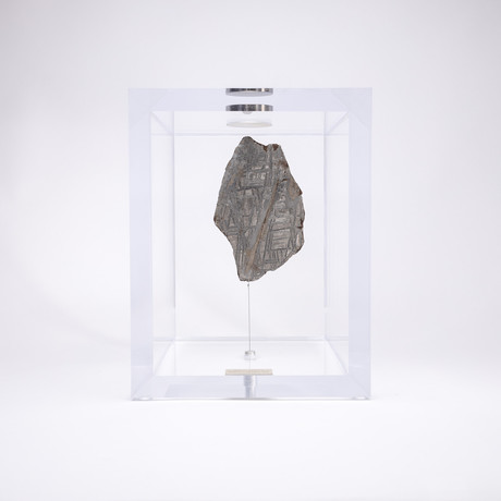 Space Box // Seymchan Meteorite from Magadanskaya Oblast, Russia // Large