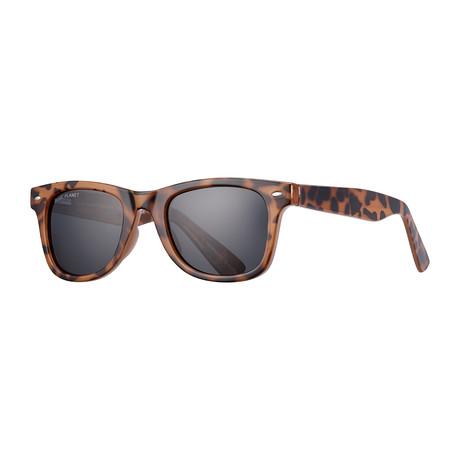 Wallace Polarized Sunglasses // Brown + Black
