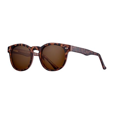 Indie Polarized Sunglasses // Brown Tortoise