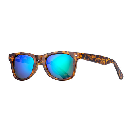 Wallace Polarized Sunglasses // Tortoise Brown + Blue