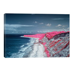 "Costal Magenta Beach - Bahia, Brazil // Glauco Meneghelli (18""W x 12""H x 0.75""D)"