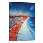 "Costal Vertical Beach - Bahia, Brazil // Glauco Meneghelli (12""W x 18""H x 0.75""D)"