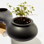 Sakura Planter (Gray with Poplar Stand)
