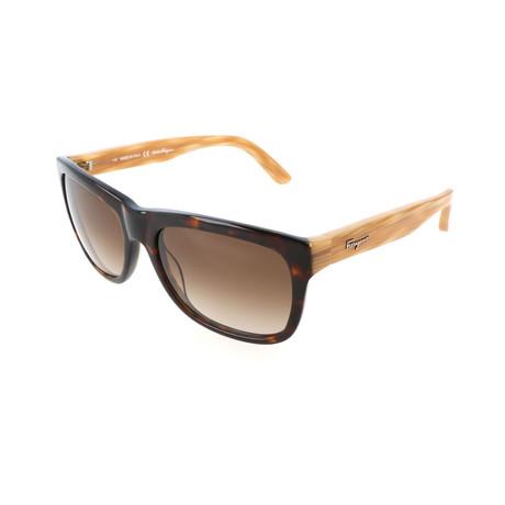Unisex SF686S Sunglasses // Havana