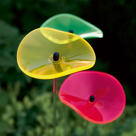 Sun Bouquet // Lucille // Colorful