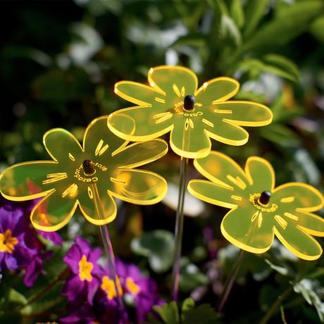 Bouquet Of Sunflowers // Nea // Colorful