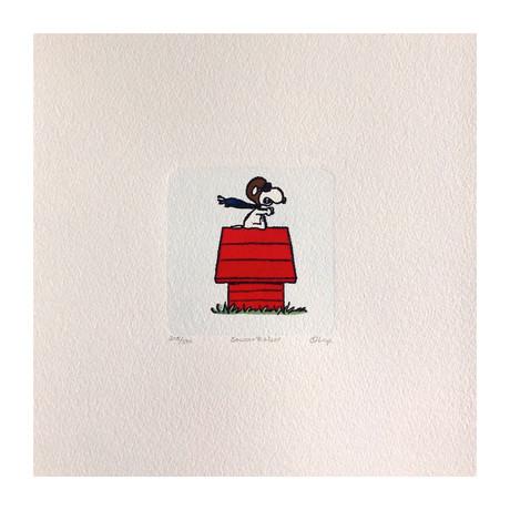 Snoopy Hand Painted Sowa & Reiser Etching #D/500