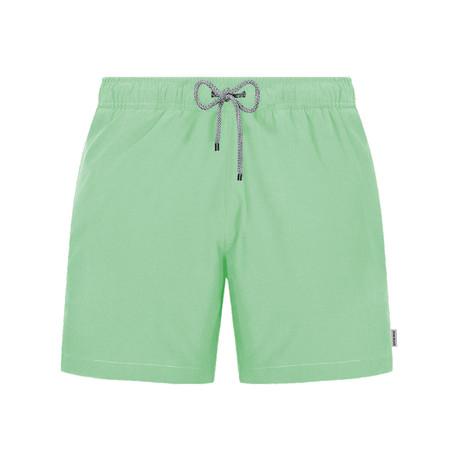 Solid Swim Short // Mint (S)