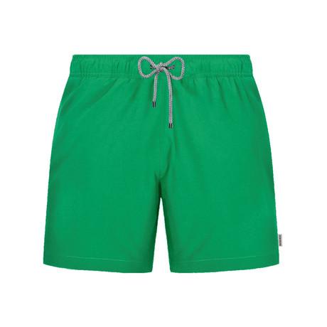 Solid Swim Short // Green (S)