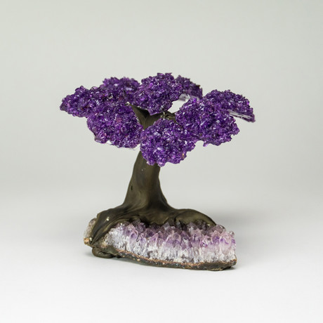 The Protection Tree // Amethyst Clustered Gemstone Tree + Amethyst Matrix // Medium