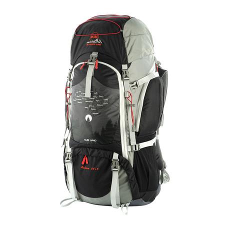Interlaken Backpack // Gray