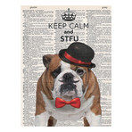STFU Bulldog