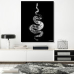 "Python Gyotaku No. 01 (White Black) // High Gloss Panel (12""W x 15""H x 0.5""D)"