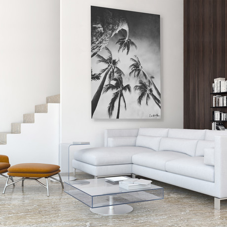 "Swaying Palms (Bw) // High Gloss Panel (12""W x 15""H x 0.5""D)"