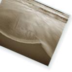 "Wash Ashore // High Gloss Panel (12""W x 15""H x 0.5""D)"