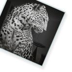 "Sanaa // High Gloss Panel (15""W x 15""H x 0.5""D)"