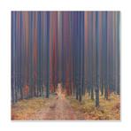 """Through The Path // High Gloss Panel (15""""W x 15""""H x 0.5""""D)"""