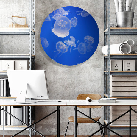 "Sea Jellies (Round) // High Gloss Panel (15""W x 15""H x 0.5""D)"