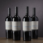 93 Point Mariflor Malbec from Argentina // Set of 4