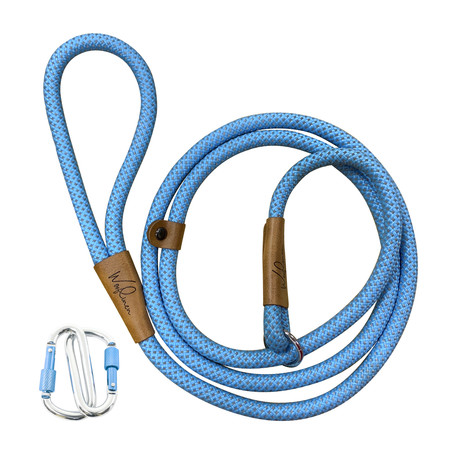 Ultra Reflective 6' Dog Slip Leash (Woof Blue)