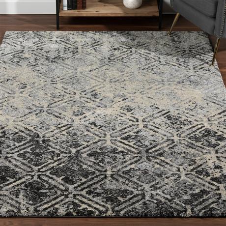 Placid // Moroccan Boho Area Rug // Gray (3'L x 5'W)