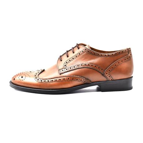 Adrian Dress Shoe // Brown (Euro: 39)