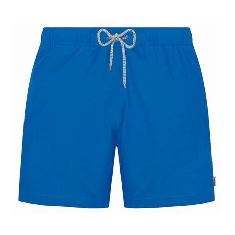 Solid Swim Short // Blue (S)
