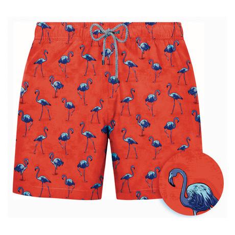 Flamingo Swim Short // Red (S)