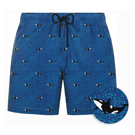 Killer Whale Swim Short // Blue (S)