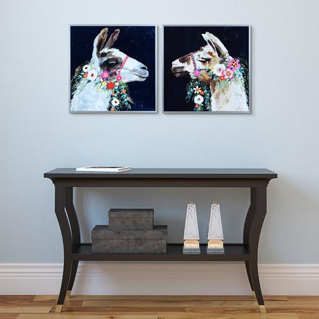 White + Brown Lama // Anodized Gun Powder Aluminum Frame (White Lama)